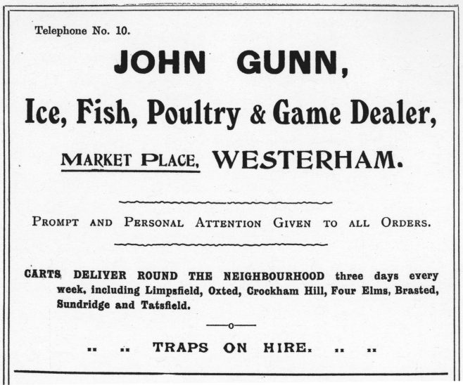 This 1907 Advert for John Gunn's Ice, Fish, Poultry & Game business next door to the Fountain Coffee Tavern shows true diversity - the offer of 'traps on hire' - no doubt when they were not delivering goods around the local neighbourhood.