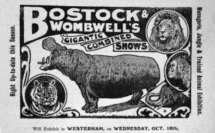 Bostock and Wombwells Circus advert, Westerham Herald 1914
