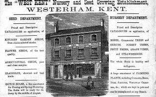 Advertisement for John Cattell's 'West Kent' Nursery