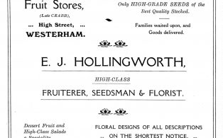 Advertisement for greengrocer  and seedsman Edwin Hollingworth from Hookers Almanack