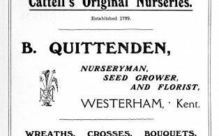 Advertisement for nurseryman B. Quittenden