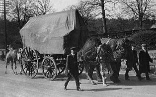 Bostock travelling circus
