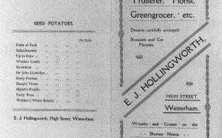 Edwin Hollingworth seed catalog