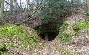 The Hosey Caves