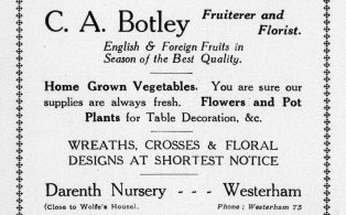 Advertisement for fruiterer and florist Botley from the Westerham Guide 1927