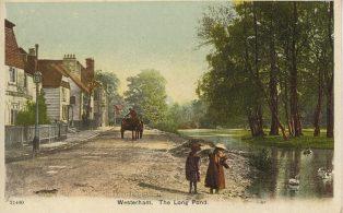 Long Pond, West of High Street including Children