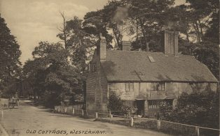 Old Cottages West High Street by Darent