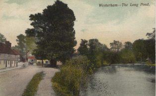 Long Pond looking East to Verralls Corner
