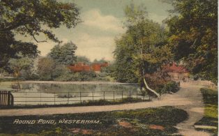 Round Pond beside Mill Lane