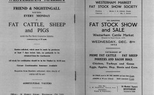 Fat Stock Show Catalogue 1954